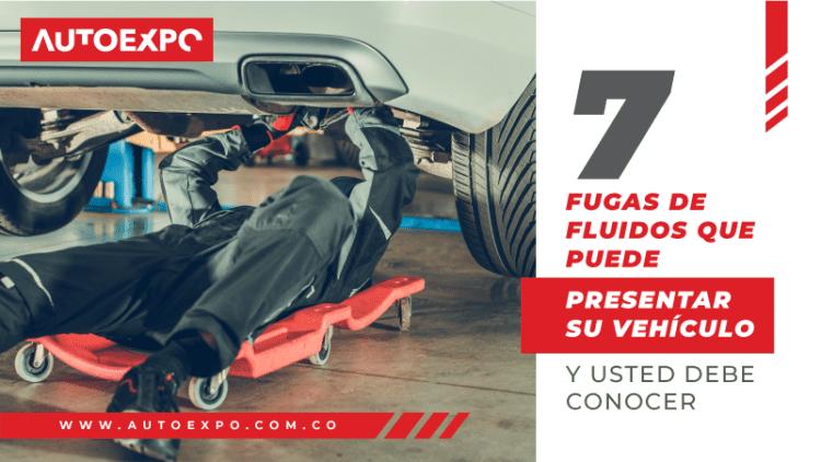 7 fugas de fluidos que puede presentar su vehículo - Autoexpo Concesionario